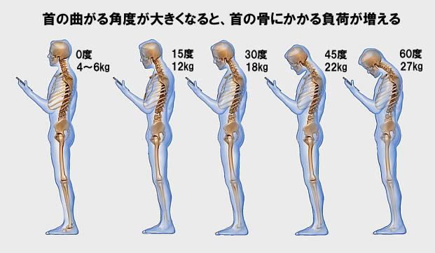 首の曲がる角度と頭の重さ